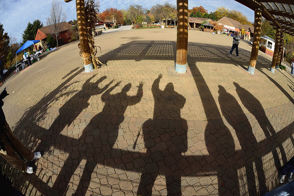 Shadows - Cleveland Metroparks Zoo