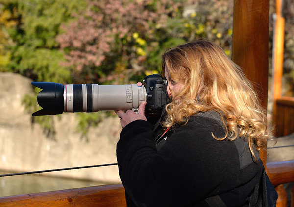 Michele photographing the grizzly bear.
