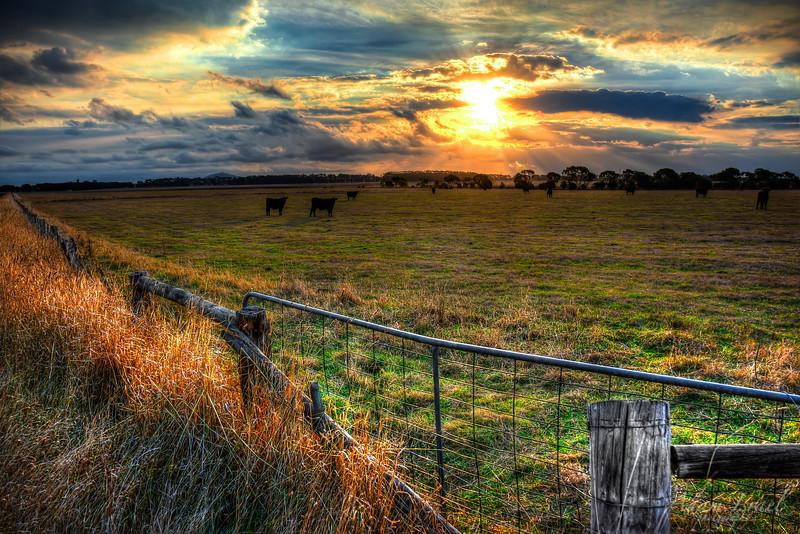 Cowering Sunset