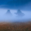 Misty   Bohemia Czech Republic