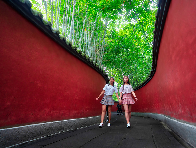 Two Girls Wander Through a Bamboo Forest in China