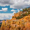Colors and Textures of Bryce Canyon (Utah)
