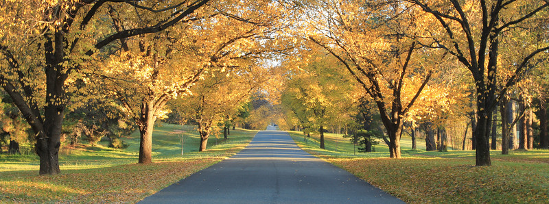 The driveway to the Governor General's Residence, Canberra