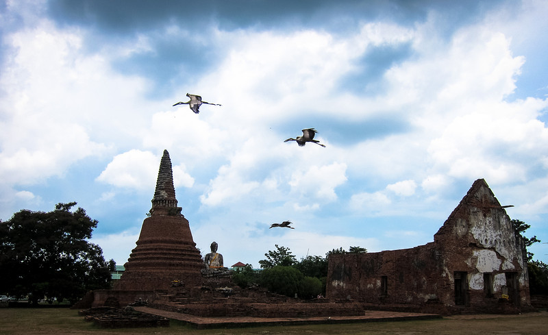 Wat Worachettharam in Ayutthaya with birds above. A ruin off the tourist trail, Ayutthaya is a place to relax and explore at your own pace.