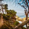 Hiking in Point Lobos (California)