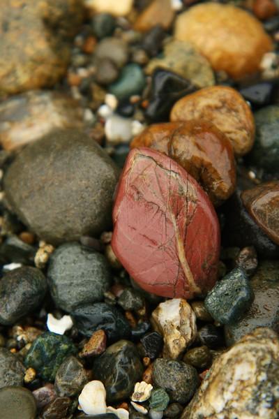 Red Rock Leaf
