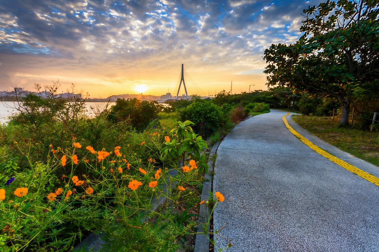 Sunrise Down the Path
