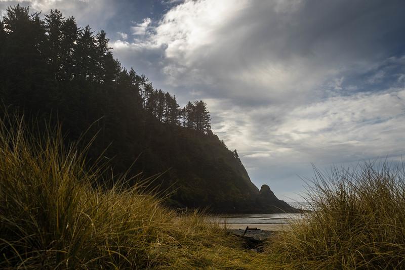 Oregon Coast #9