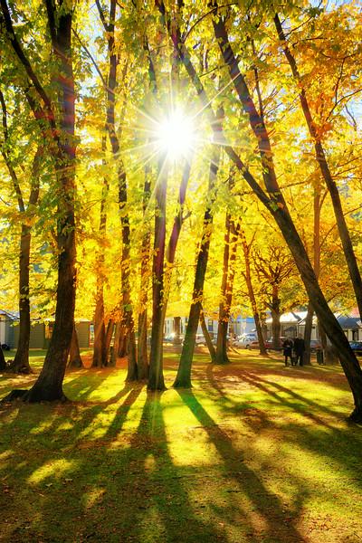 Arrowtown in the Autumn