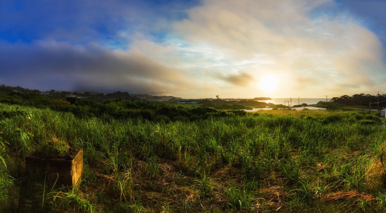 Fields of Okinawa