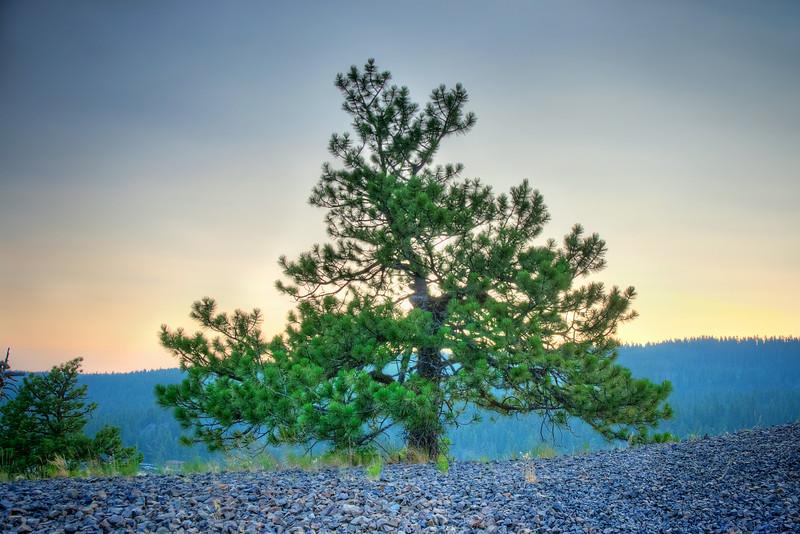 DSC_3155_6_7_HDR_Lone Pine-Ponderosa State Park_BlendedPSE