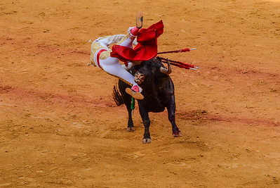 Bullfighter caught by the bull, Sevilla, Spain