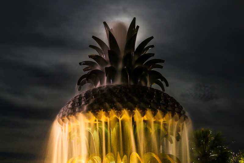 Fountain in the Moonlight