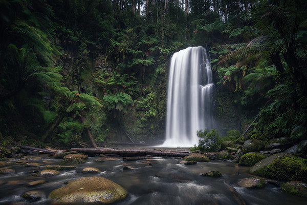 Misty Falls || Otways National Park