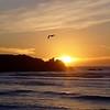 Punakaiki Sunset
