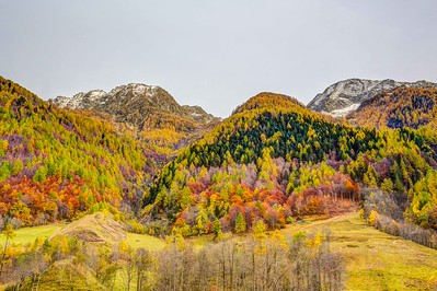 2015-10-24 Autumn in Valley Maggia-421-Edit_fusjed-2