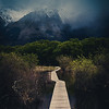Path to the Nethermountains