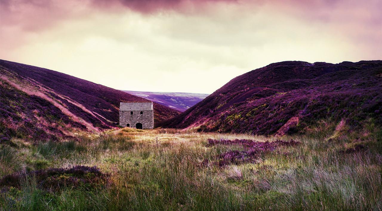 Mine amongst the heather