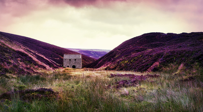 Mine amongst the heather