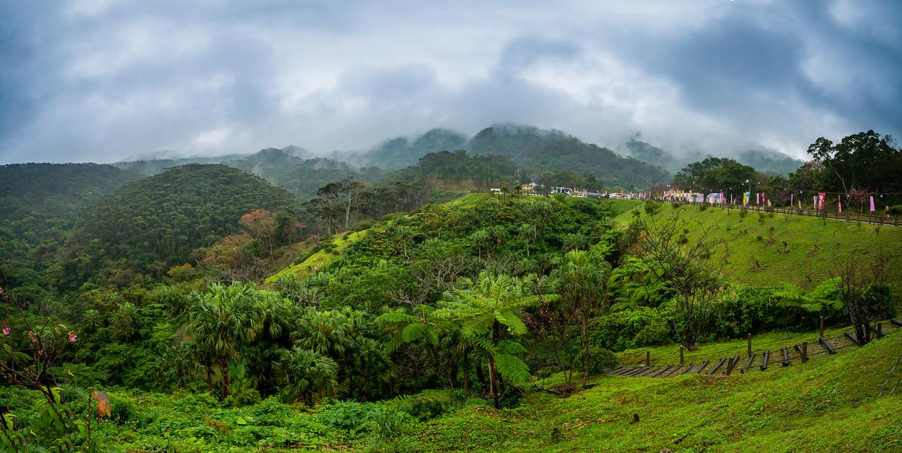 Mt Yae Misty Mountains