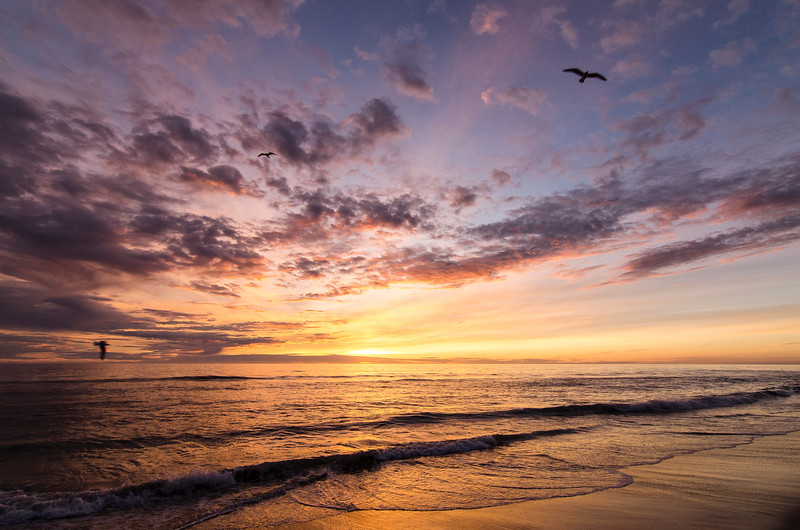 Carlsbad State Beach Sunset