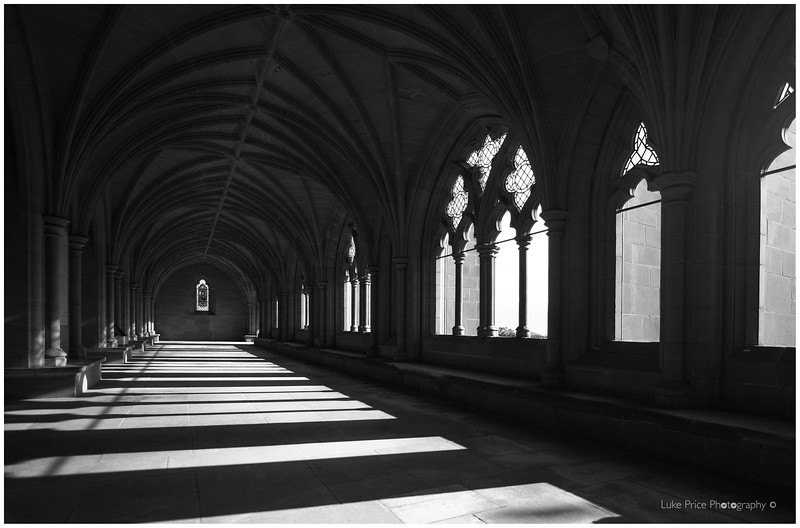shadows in the cloisters