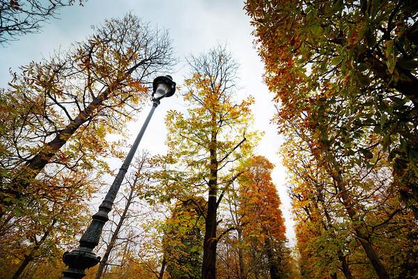 Walking Through the Parks in Paris