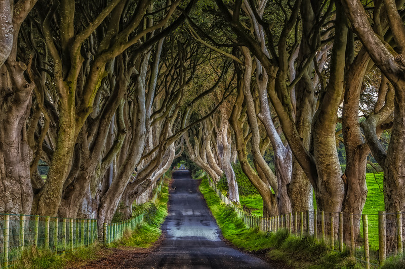 A look down Kings Road from Game of Thrones   Northern Ireland, UK
