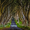 A look down Kings Road from Game of Thrones | Northern Ireland, UK