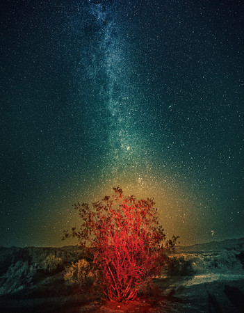 The Milky Way over the Burning Bush I took this photo in Death Valley one evening. The bush is red and mysterious because of a bit or light-painting with my headlamp. My neck got a bit tired from multiple tries. That glow around it? I don't really know… maybe a bit of the dust from the desert caught the red light. Either way, I like how everything looks all funky and zen.- Trey RatcliffClick here to read the rest of this post at the Stuck in Customs blog.