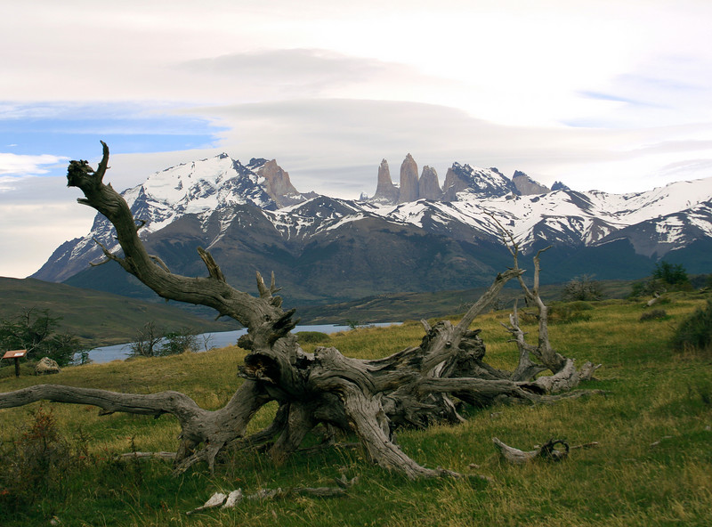 Patagonia - Torres del Paine with Paine towers in background