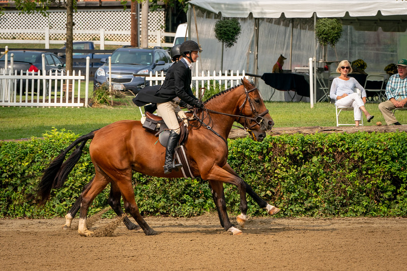 Hunt Pairs at the Warrenton Horse Show Hunt Night September 2019