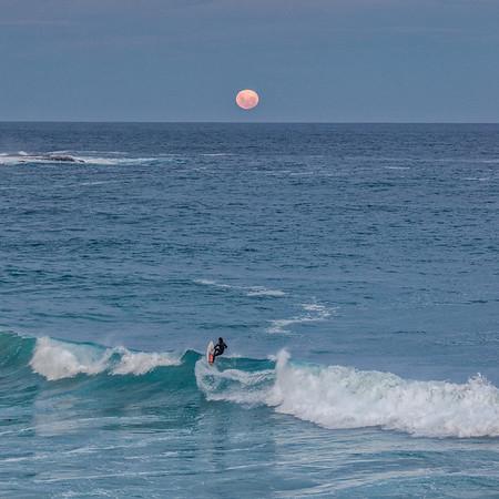 Full Moon Surfer