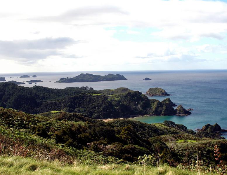 kauri cliffs scenic