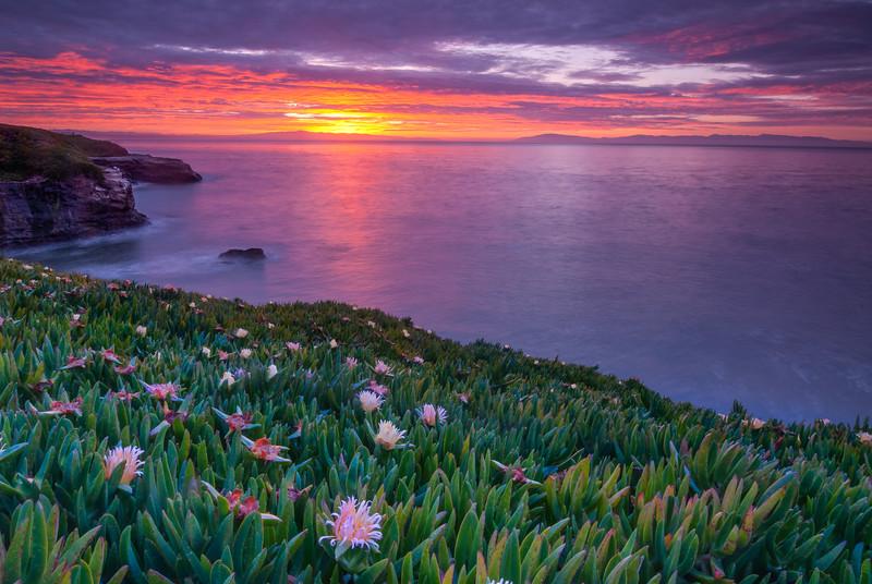Santa Cruz sunrise, California