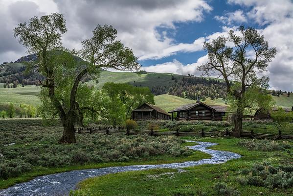 Buffalo Ranch in Lamar Valley