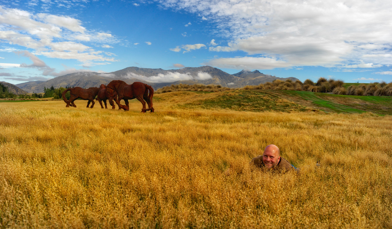 Derek Sivers In A Field Of Fake Horses