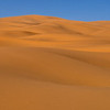 On Camel, Across the Sahara Desert