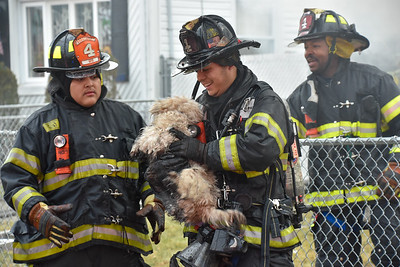 A Uniondale firemen rescues a dog from a house fire. 01-05-2017