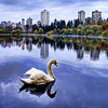 "<h2>Morning Mist at the Lagoon</h2> <br/>This was shot in Stanley Park in Vancouver one morning.  Vancouver always seems to be nice and cloudy, so the colorful trees around the park always stand out nicely.  There was a giant swan floating nearby while I was walking around, so I took this single RAW and converted to HDR so I could be sure to get all the little colors in the trees and the various shades in the sky and water.<br/><br/>- Trey Ratcliff<br/><br/><a href=""http://www.stuckincustoms.com/2006/11/10/morning-mist-on-the-lagoon/"" rel=""nofollow"">Click here to read the rest of this post at the Stuck in Customs blog.</a>"