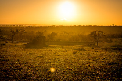 Sunrise on safari