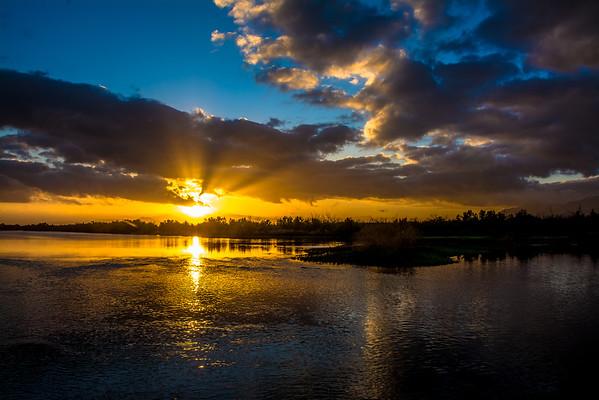 Tres Rios Wetlands