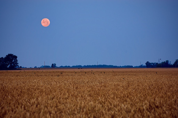 'Supermoon Over Missouri' ~ Rural Missouri