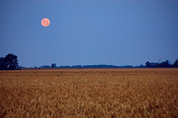 'Supermoon Over Missouri' ~ Rural Missouri