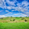 A Rainbow On Waiheke Island