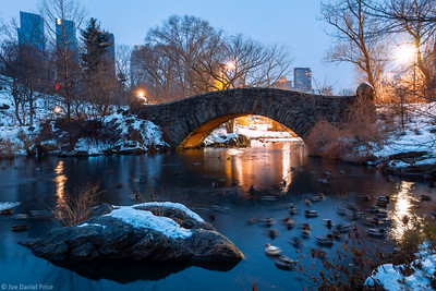 The Pond and Ducks, Central Park, New York City, New York, America