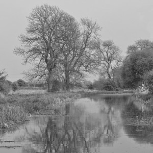 On the Pocklington Canal 1