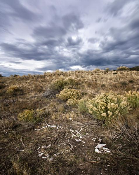 Utah's Vast Nothingness