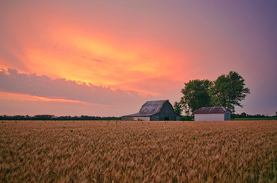 'Soft Glow' ~ Rural Missouri