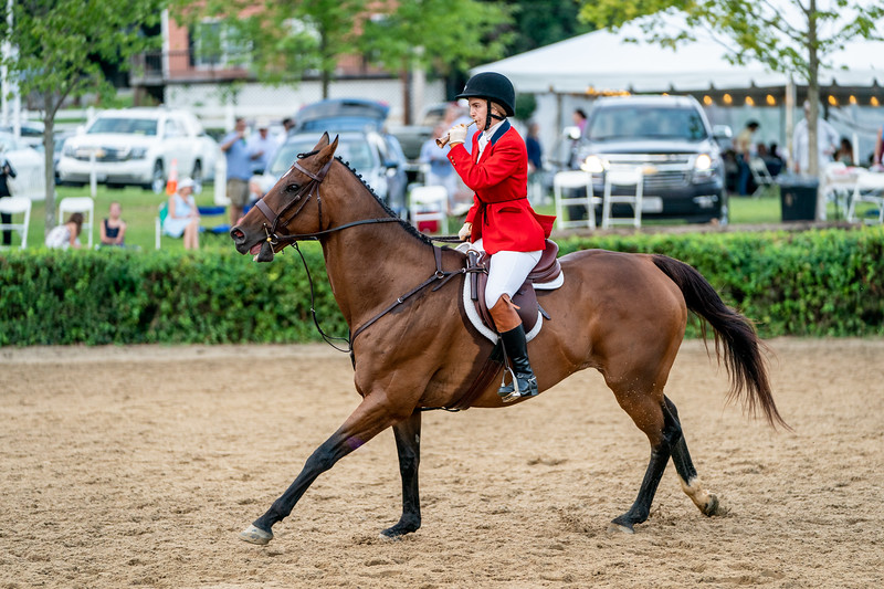 "Blowing 'Gone Away"" at Warrenton Horse Show Hunt Night September 2019"